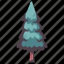 tree, nature, environment, wood, garden, natural, pine