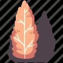 tree, nature, environment, wood, garden, pine, natural