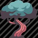 tree, nature, environment, wood, natural, spring, branch