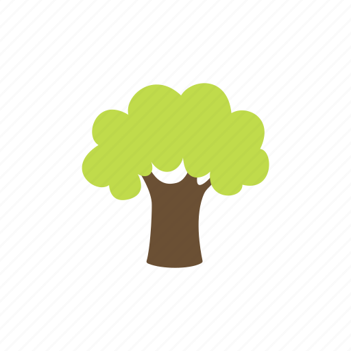 botany, ecology, nature, oak, plant, tree, wood icon