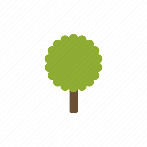 forest tree, garden, maple, nature, plant, tree, wood icon
