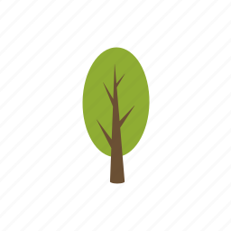 ecology, forest, nature, plant, poplar, tree, wood icon
