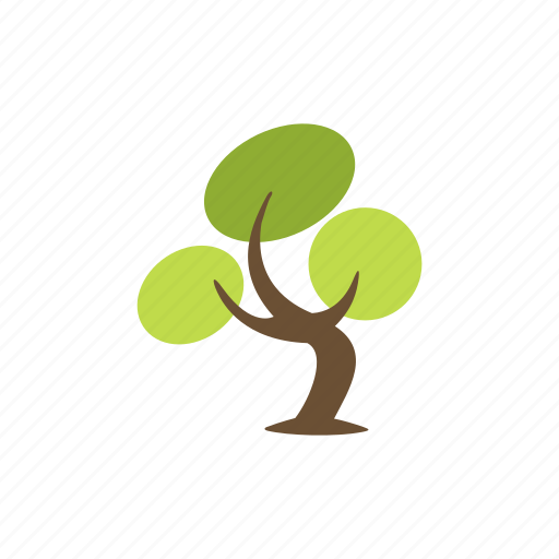 bonsai, botany, green, nature, plant, tree, wood icon
