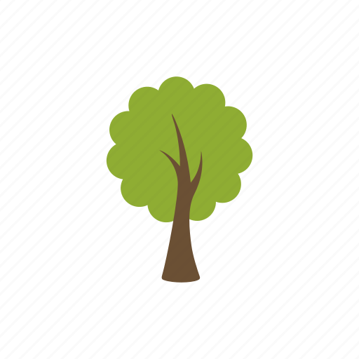 eco, forest tree, leafy, nature, plant, tree, wood icon