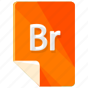 br, extension, file, format icon