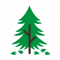 fall, forestry, forrest, old, pine, tree, trees icon