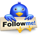 bird, follow, me, social media, symbol, twitter icon