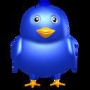 bird, birdie, blue, dark blue, dickey, dicky, flier, flyer, fowl, navy blue, sapphirine, twitter icon