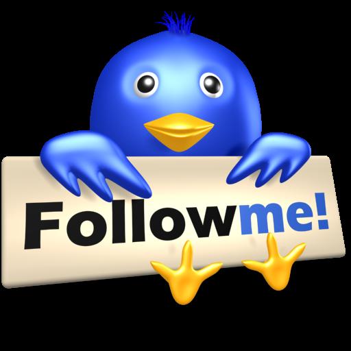 bird, follow, me, social media, symbol, twitter icon