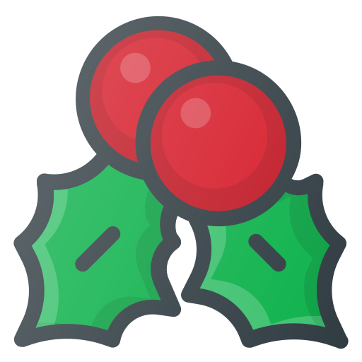 christmas, mistletoe, ornament icon