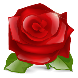flower, lilly flower, nature, plant, red, rose icon