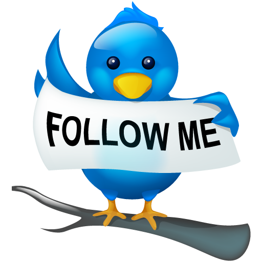 bird, follow, logo, me, social, social media, tweet, twitter icon