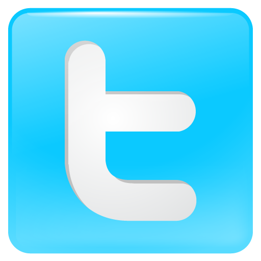 bird, button, logo, social, social media, tweet, twitter icon