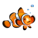 clown fish, fish, nemo icon