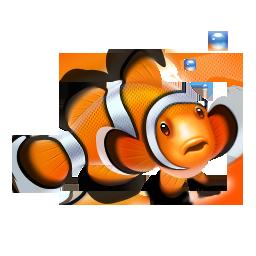 clown fish, fish, nemo icon