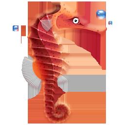 animal, fish, seahorse icon