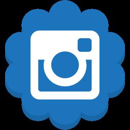 flower, instagram, media, round, social icon
