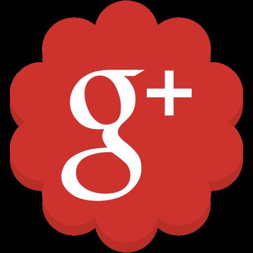 flower, google, googleplus, media, plus, round, social icon