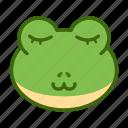 emoticon, frog, funny, sleep icon