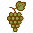 food, fruit, grape, health, wine icon