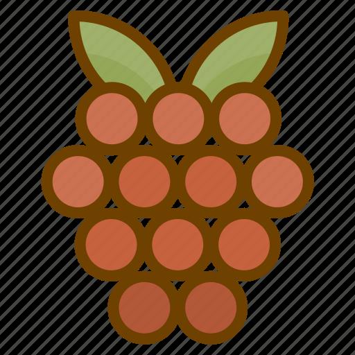 food, fruit, health, organic, raspberry, vegan, vegetarian icon