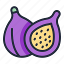 fig, fruit, food, juicy, tropical fruit icon