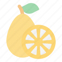 kumquat, fruit, food, juicy, tropical fruit