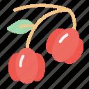 pitanga, fruit, food, juicy, tropical fruit