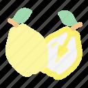 quince, fruit, food, juicy, tropical fruit