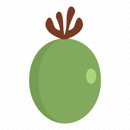 feijoa, food, fruit, healthy, ripe, sweet, vegetarian icon