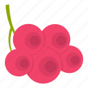 berry, food, fruit, nature, plant, ripe, viburnum icon