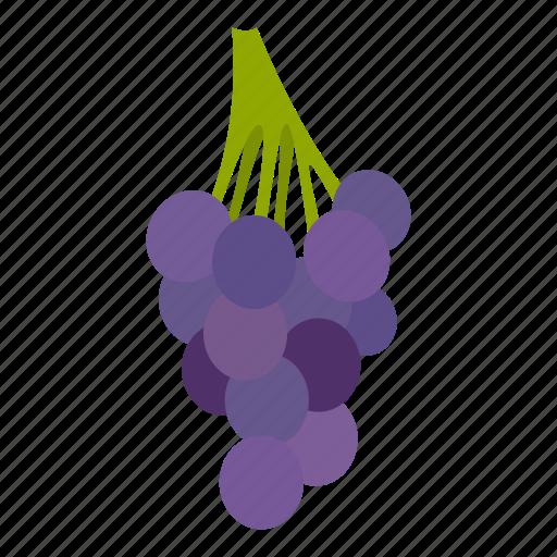 berry, dessert, fruit, grape, healthy, ripe, vine icon