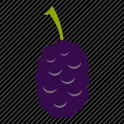berry, food, fresh, fruit, mulberry, organic, ripe icon