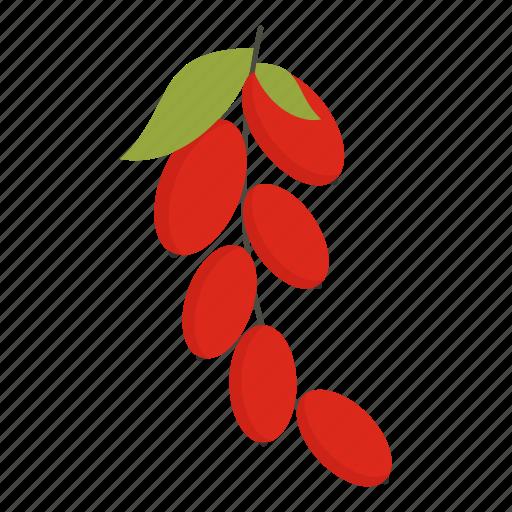 berry, cornel, cornelian, dogwood, fruit, juicy, sweet icon