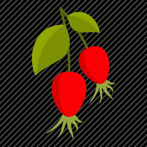 berry, food, fresh, healthy, herbal, rosehip, vitamin icon