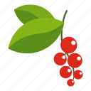 berry, currant, food, fruit, ripe, sweet, white icon