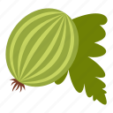 food, fresh, fruit, gooseberry, healthy, organic, vegetarian icon