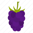 berry, blackberry, brambleberry, food, fruit, mulberry, ripe icon
