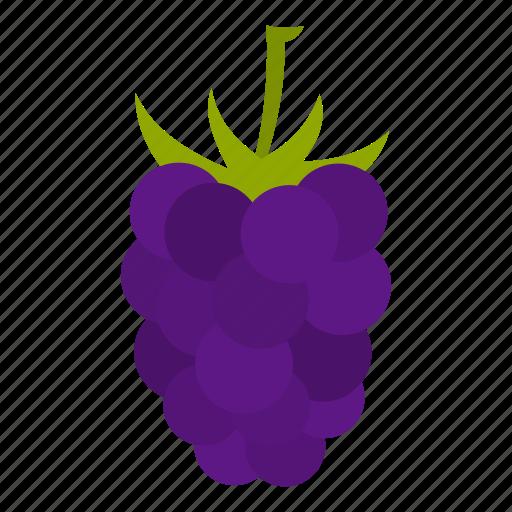 berry, blackberry, brambleberry, food, fruit, mulberry, ripe icon