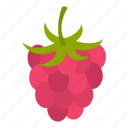food, fresh, fruit, ingredient, juicy, raspberry, ripe icon