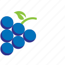 blue, blueberries, fruit icon