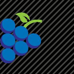 blue, blueberries, fruit icon
