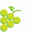 fruit, grapes, green icon