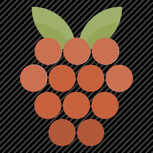 berry, food, fruit, health, kitchen, raspberry, vegan icon