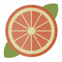 food, fruit, health, orange icon