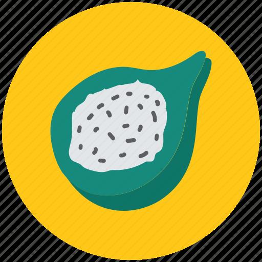 butternut squash, food, half squash, squash, vegetable icon