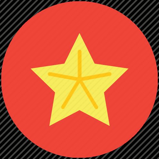 averrhoa carambola, carambola, carambola slice, food, fruit, star fruit icon