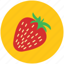 berry, food, fruit, healthy food, red fruit, strawberry