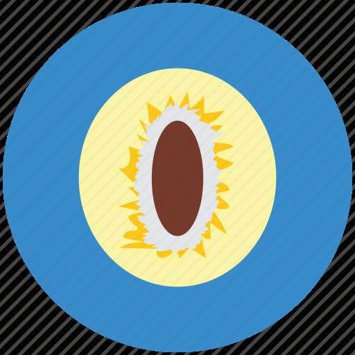 alligator pear, avocado, avocado pear, avocado slice, fruit, pear, tropical fruit icon