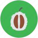 food, fruit, half litchi, healthy food, leechee, lichee, lichii, lychee icon